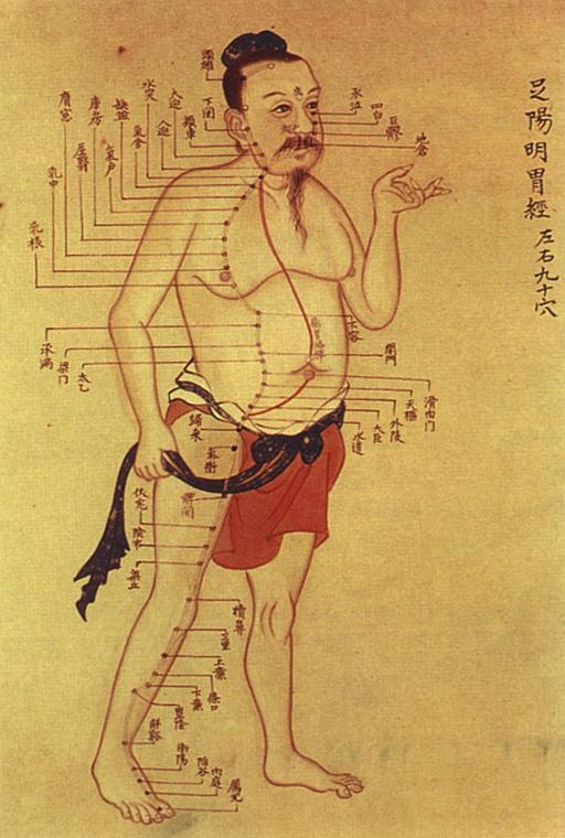 méridiens d'acupuncture chinoise